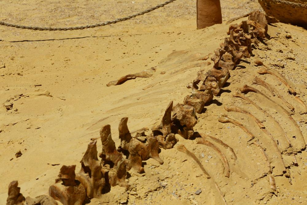Le patrimoine mondial de l'Unesco en Egypte
